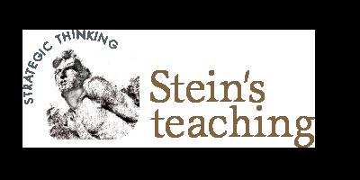 Steinsteaching